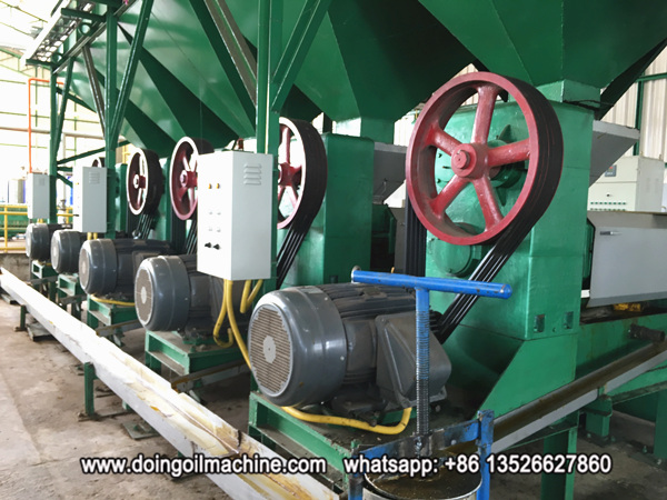 palm kernel oil expeller machinery