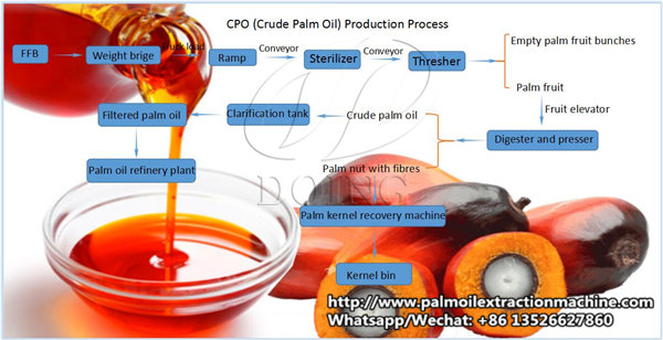 palm oil processing process flowchart