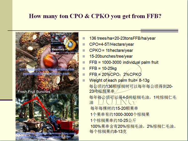 how many ton cpo you can get from FFB?