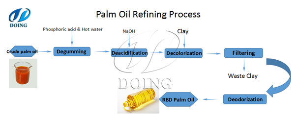 What Is The Detail Process Of Palm Oil Refinerypalm Oil Extraction Faq
