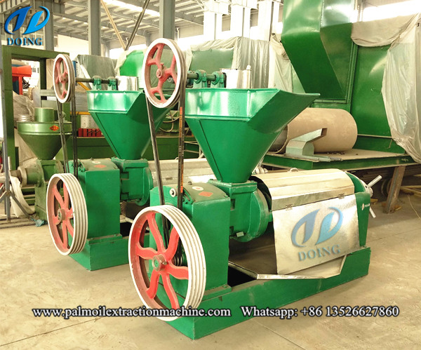 palm kernel oil extarction machine