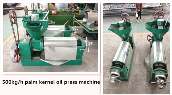 palm kernle oil expeller