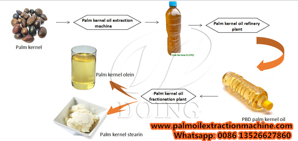palm kernle oil production process