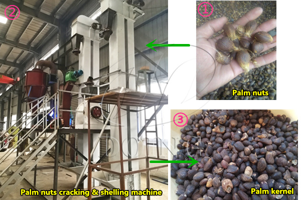 palm nut cracking and separating machine