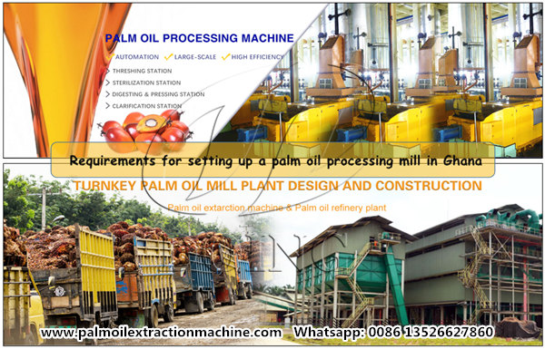 palm oil processing mill