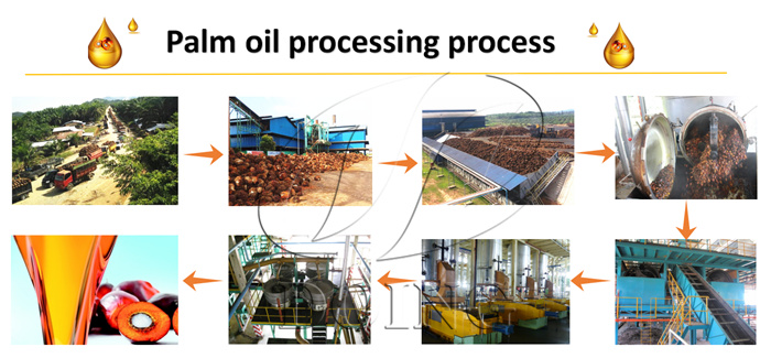 palm oil processing machine in nigeria