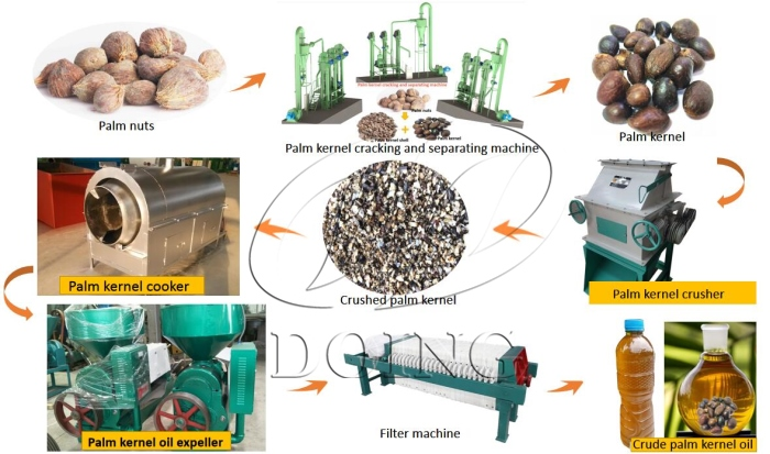 palm kernel oil processing process